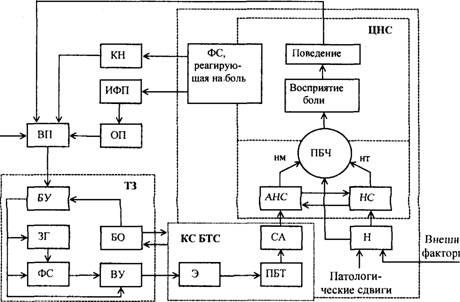 Структурная схема БТС ЭА:
